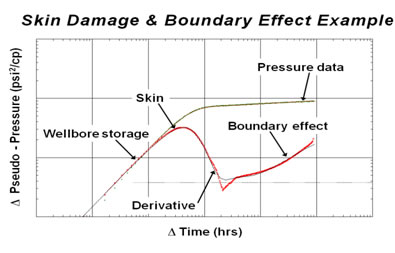 Skin damage and boundary effect example